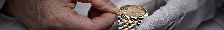 Rolex servicing cover