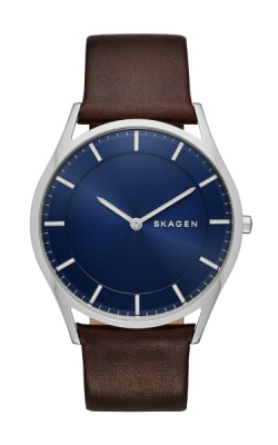 Skagen Holst SKW6237 product image