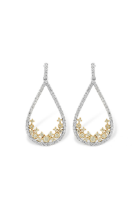 Allison Kaufman Earrings H214-62183