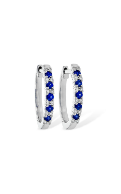 Allison Kaufman Earrings Earring C217-31338 W product image