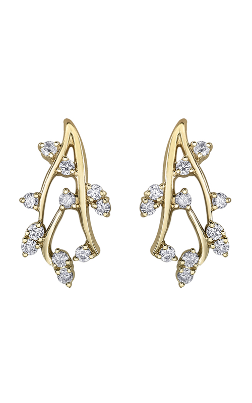 Diamond Envy Earrings EE4176/50-10 product image