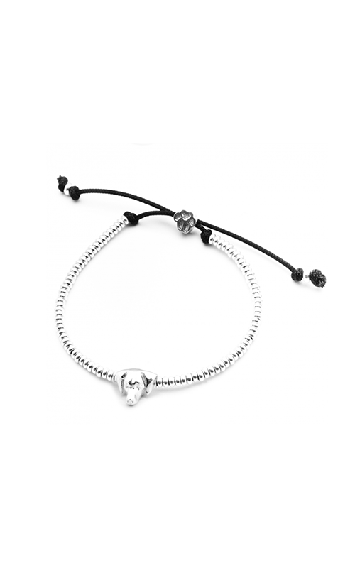 Dog Fever Head Bracelet WEIMARANER product image