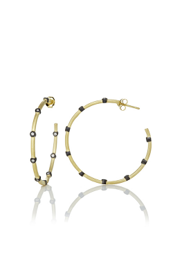 Freida Rothman FR Signature Earrings YRZE020015B-14K product image