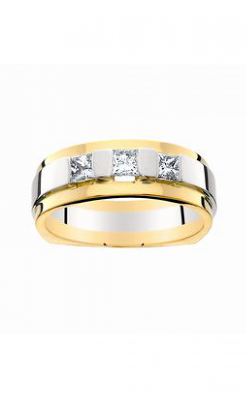 HL Mfg Men`s Rings Men's ring 8026D product image