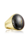 Tacori Oval Cabochon featuring Tiger Iron Men's Ring MR104Y39