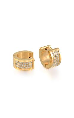 Italgem Steel Men's Earrings Earrings SEA180 product image
