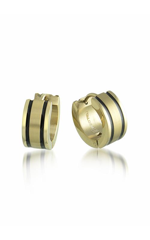 Italgem Steel Men's Earrings Earrings SEA167 product image