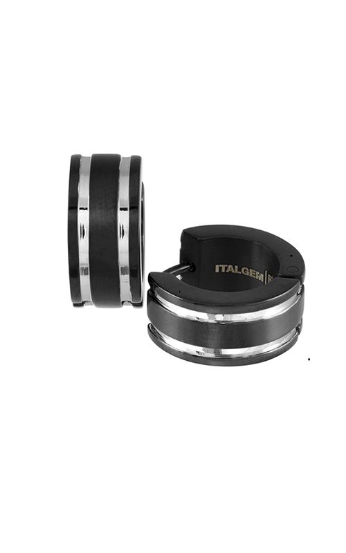 Istalgem Steel Earrings SEA58 product image