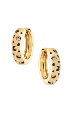 Jewelry Designer Showcase Mirror Collection Earrings R9565 product image