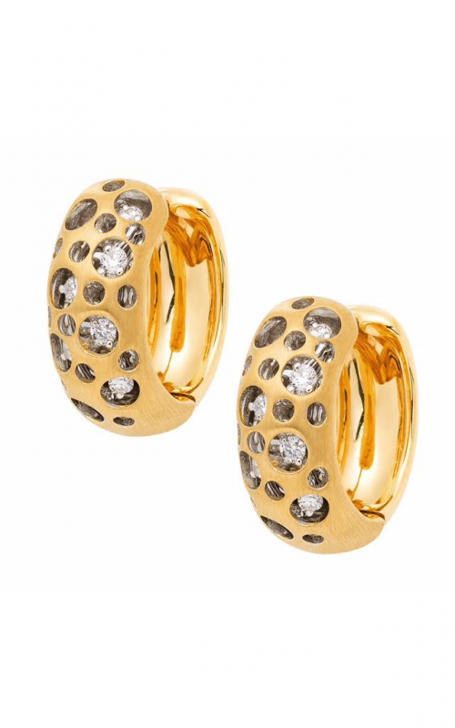 Jewelry Designer Showcase Mirror Collection Earrings R8143 product image