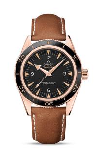 Omega Seamaster 233.62.41.21.01.002