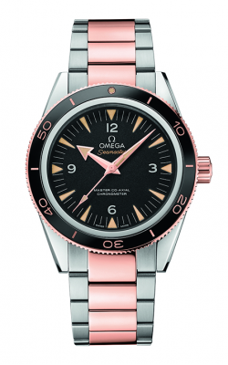 Omega Seamaster Watch 233.20.41.21.01.001 product image
