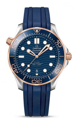 Omega Seamaster Watch 210.22.42.20.03.001 product image