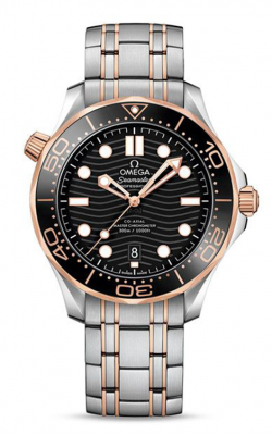 Omega Seamaster Watch 210.20.42.20.01.002 product image