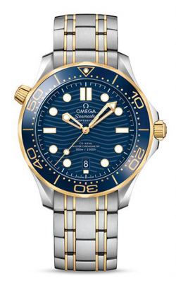 Omega Seamaster Watch 210.20.42.20.03.001 product image