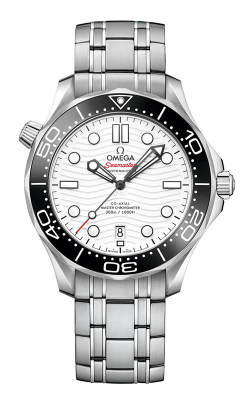 Omega Seamaster Watch 210.30.42.20.04.001 product image