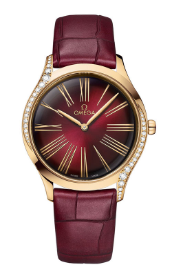 Omega De Ville	 Watch 428.58.36.60.11.001 product image