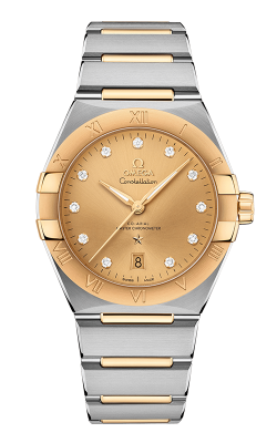 Omega Constellation Watch 131.20.39.20.58.001 product image