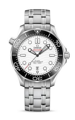 Omega Seamaster Watch 210.30.42.20.04.001 product image