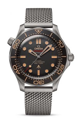 Omega Seamaster Watch 210.90.42.20.01.001 product image