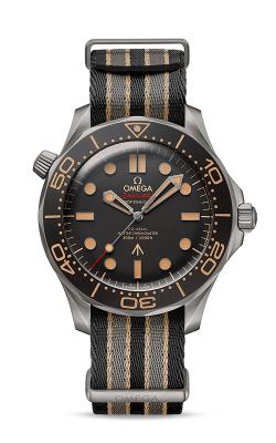 Omega Seamaster Watch 210.92.42.20.01.001 product image