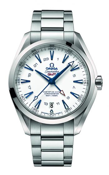 Omega Seamaster Watch 231.90.43.22.04.001 product image