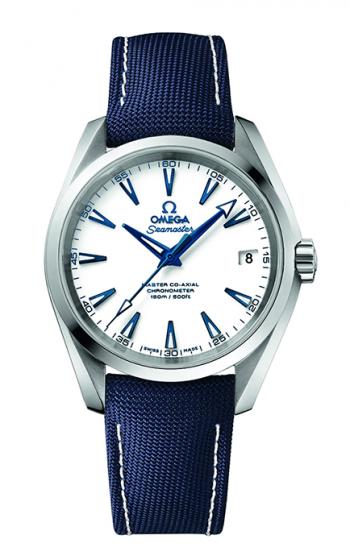 Omega Seamaster Watch 231.92.39.21.04.001 product image