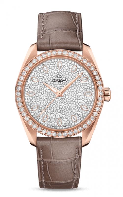 Omega Seamaster Watch 220.58.38.20.99.003 product image