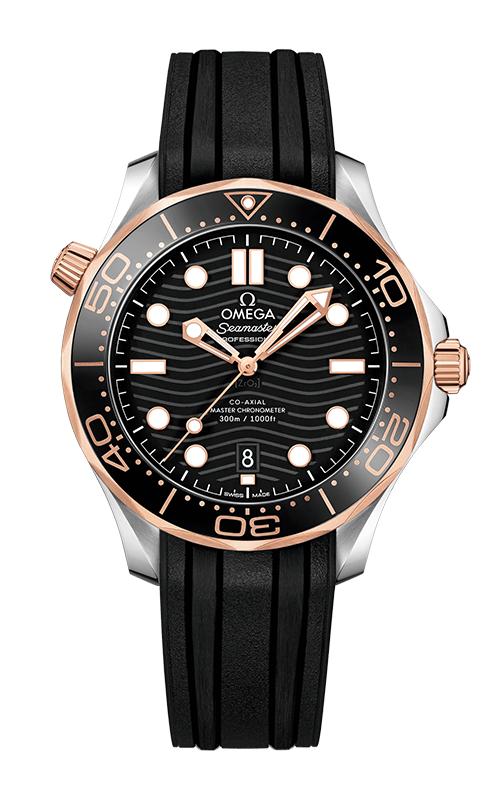 Omega Seamaster 210.22.42.20.01.002 product image