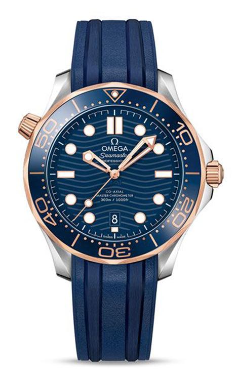Omega Seamaster Watch 210.22.42.20.03.002 product image