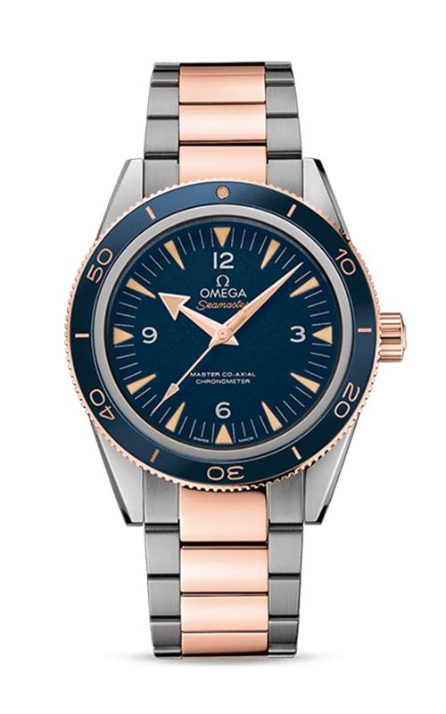 Omega Seamaster Watch 233.60.41.21.03.001 product image