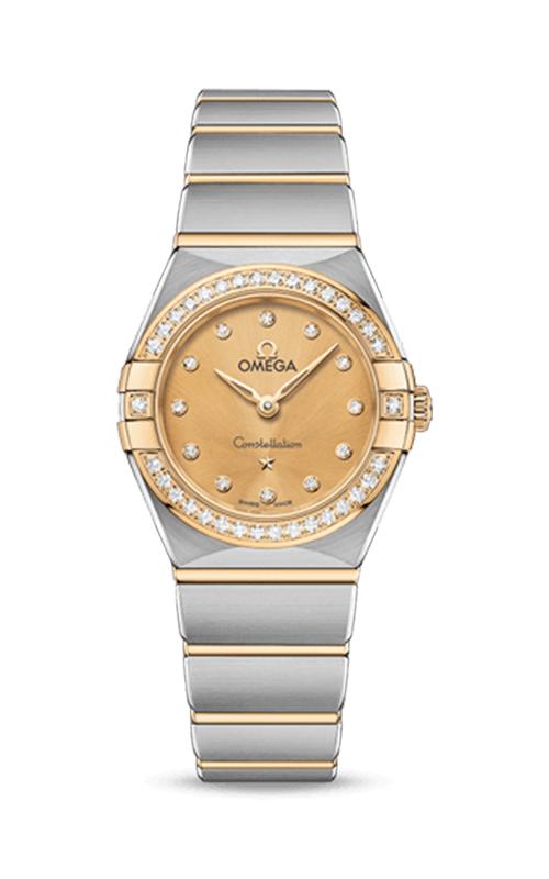 Omega Constellation 131.25.25.60.58.001 product image