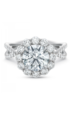 Precision Set Extraordinary Engagement ring 268918w product image