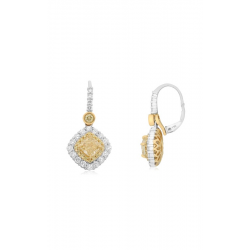 Roman and Jules Earrings NE846-1 product image