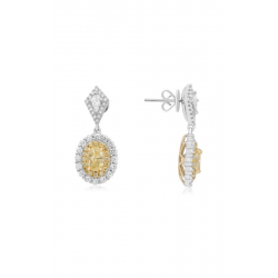Roman and Jules Earrings NE872-1 product image