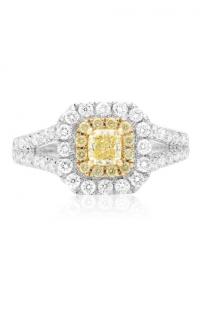 Roman and Jules Yellow Label FR236WY-18K