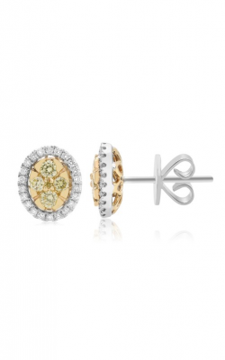 Roman and Jules Yellow Label Earrings NE884C-1 product image