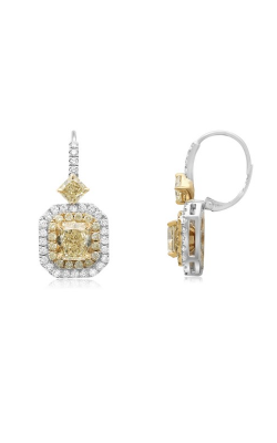Roman And Jules Yellow Label Earrings KE5496WY-18K-1 product image