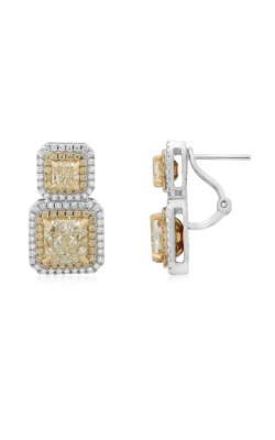 Roman And Jules Yellow Label Earrings KE5703-1 product image