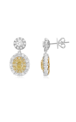 Roman And Jules Yellow Label Earrings NE704-5 product image
