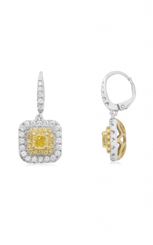 Roman and Jules Yellow Label Earring NE806-5 product image