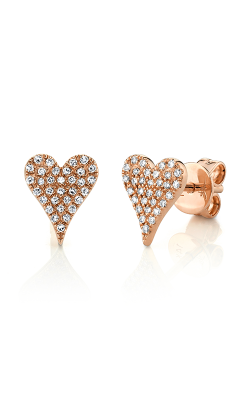 Shy Creation Kate Earrings SC55006930 product image