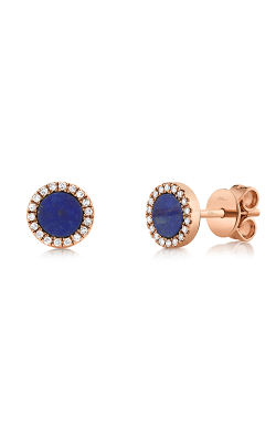 Shy Creation Kate Earrings SC55003140 product image