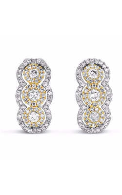S. Kashi and Sons Fashion Earrings E7767YW product image