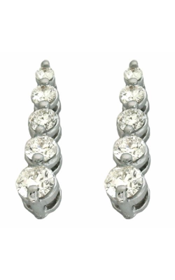 S. Kashi and Sons Journeys Earrings E7592WG product image