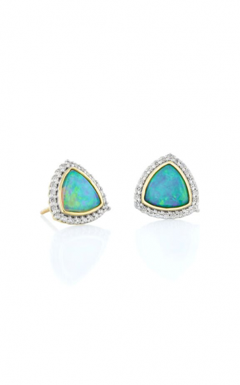 Sloane Street Jewelry Earrings SS-E197T-CO-WDCB-Y product image