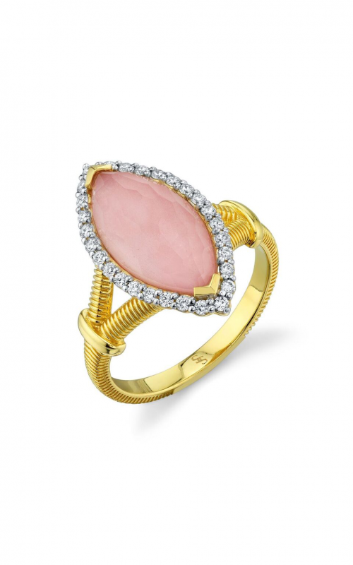Sloane Street Jewelry Fashion ring SS-R018E-POT-WDCB-Y product image
