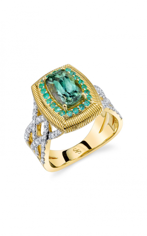 Sloane Street Jewelry Fashion ring SS-R197T-GT-PA-WDCB-Y product image