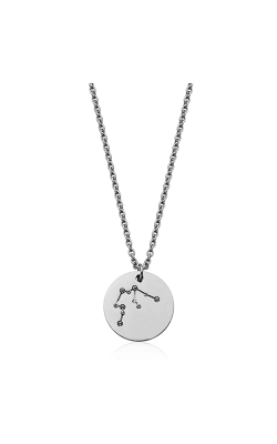 Steelx Necklace T0XC18AQ17 product image