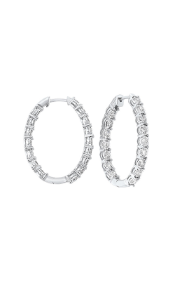 Tru-Reflection Earrings ER24315-4WC product image